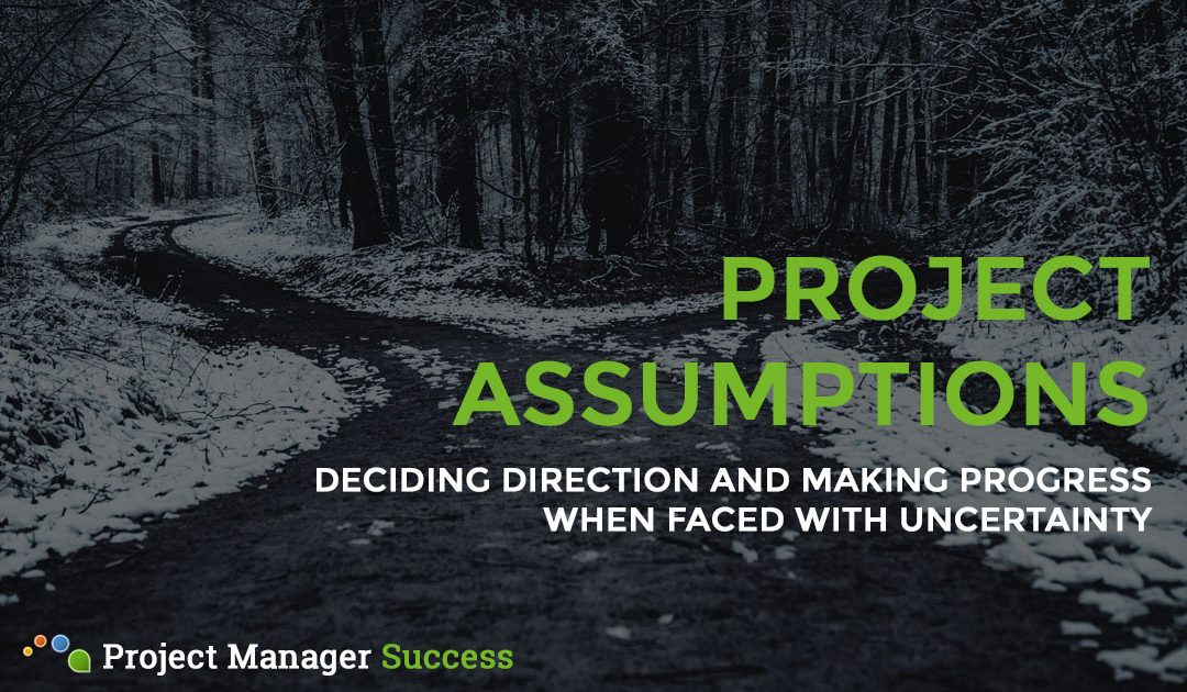What Project Assumptions Have You Made