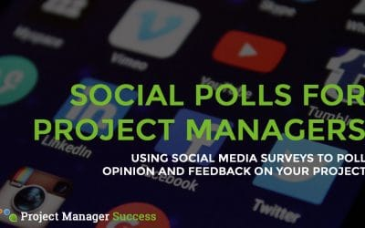 Social Media Surveys: Are They Useful for Project Managers?