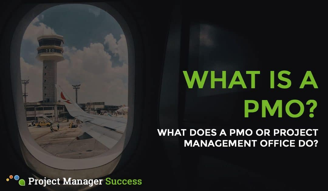 What does a PMO do?
